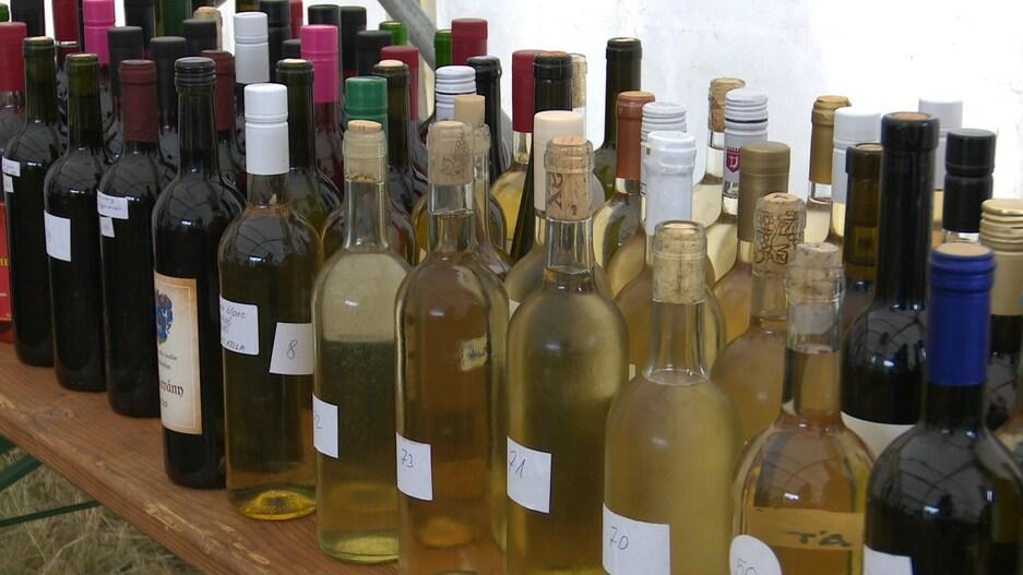 Szép eredmények születtek a bor- és pálinkaversenyen